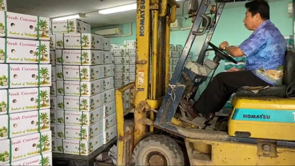 คุณประยูร วิสุทธิไพศาล เกษตรกรชาวสวนมะพร้าวน้ำหอม สวมบทพ่อค้ากำลังขับรถยกมะพร้าวไปใส่ตู้ที่จะส่งออกไปยุโรป