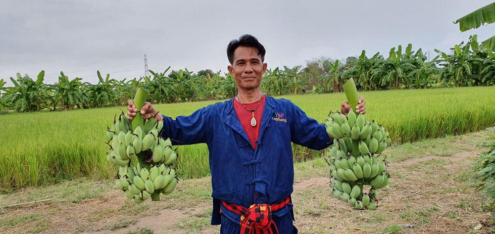 กล้วยน้ำว้าจะสร้างพลังให้เกษตรกรไทยเดินหน้าสู้ไปด้วยกัน