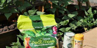 เจียไต๋ ชวนปลูกผักอยู่บ้านด้วยชุด Farm From Home อร่อย ปลอดภัย ปลูกสนุกแม้ในพื้นที่จำกัด
