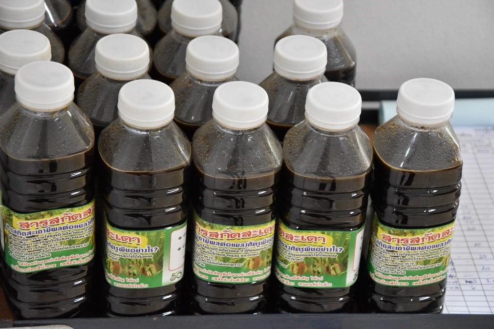 ศูนย์ฯ อารักขาพืช กรมส่งเสริมการเกษตร เปิดคลินิกรับปรึกษาปัญหาโรค-แมลงศัตรูพืช