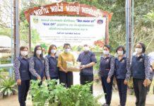 """พช.เพชรบุรี : เพชรบุรี ประสานพลัง พื้นที่ต้นแบบ """"โคก หนอง นา"""" Kick off สู่ปฏิบัติการ 90 วัน ปลูกผักสวนครัว เพื่อสร้างความมั่นคงทางอาหาร รอบ 2"""