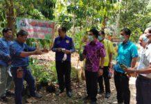 เกษตร กระบี่ พาไปชมการผลิตกาแฟขี้ชะมดและการจัดการสวนกาแฟอย่างมืออาชีพ ในงาน Field Day 2564 อำเภอลำทับ