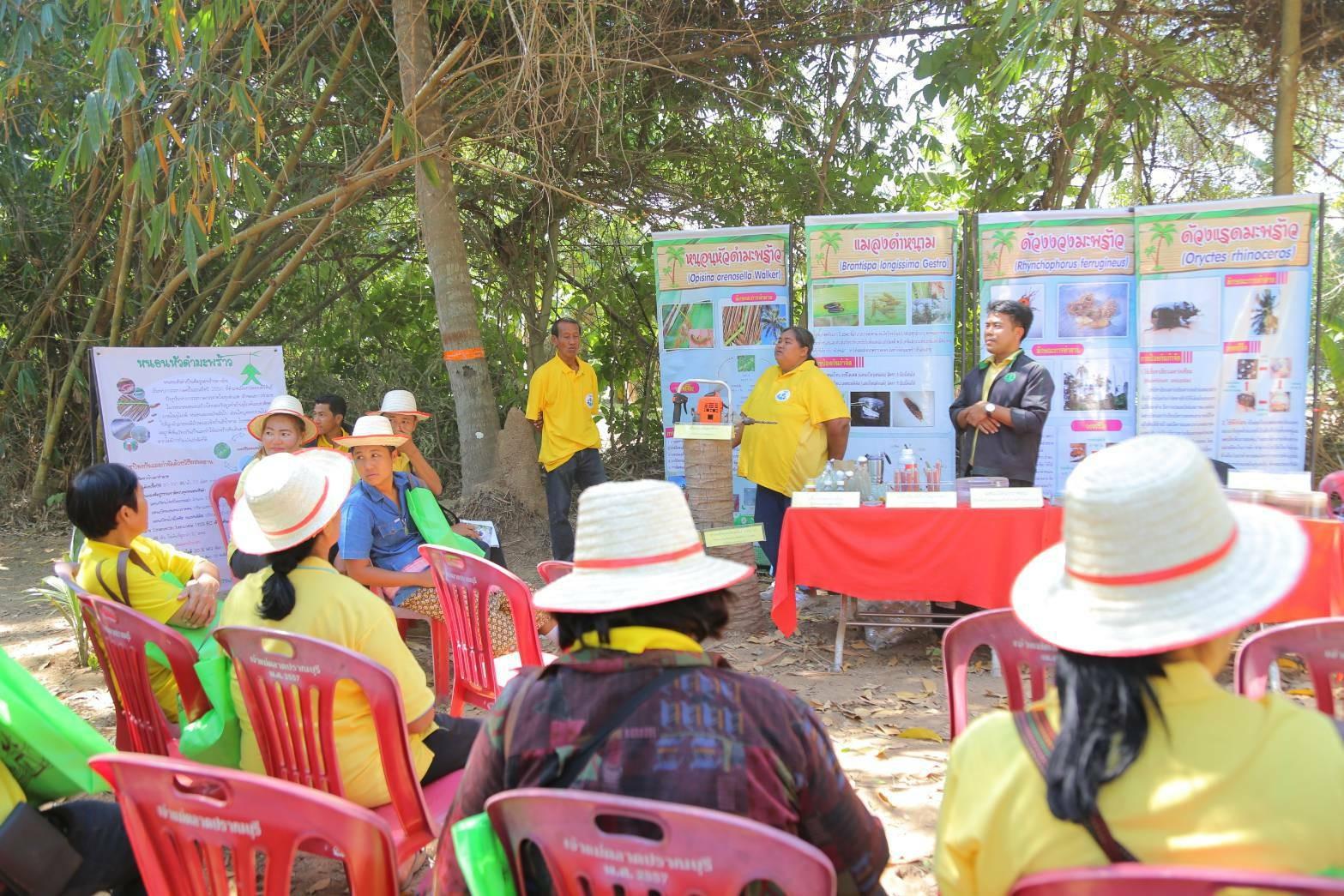 เกษตรฯ ระดมทุกจังหวัดจัดงาน Field Day เตรียมพร้อมเกษตรกรก่อนเริ่มฤดูกาลผลิตใหม่ ปี 2564