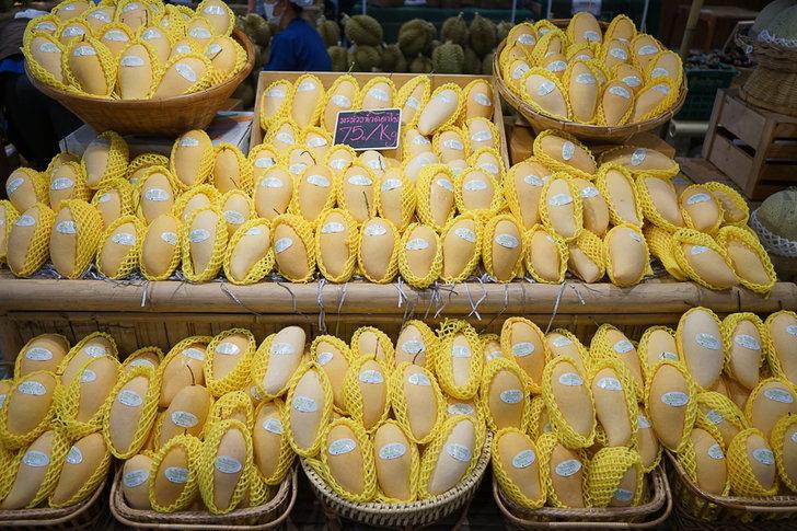 """เกษตรฯ ยกทัพผลไม้บุกห้างกลางกรุงในงาน """"Mango of SIAM ที่สุดแห่งมะม่วงไทย ถูกใจทั่วโลก"""""""
