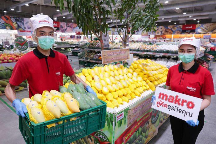 แม็คโคร เคียงข้างเกษตรกรไทย ช่วยชาวสวนระบายมะม่วงกว่า 3,000 ตัน พร้อมรณรงค์บริโภคผลไม้คุณภาพตลอดฤดูกาล สู้วิกฤตผลผลิตล้น