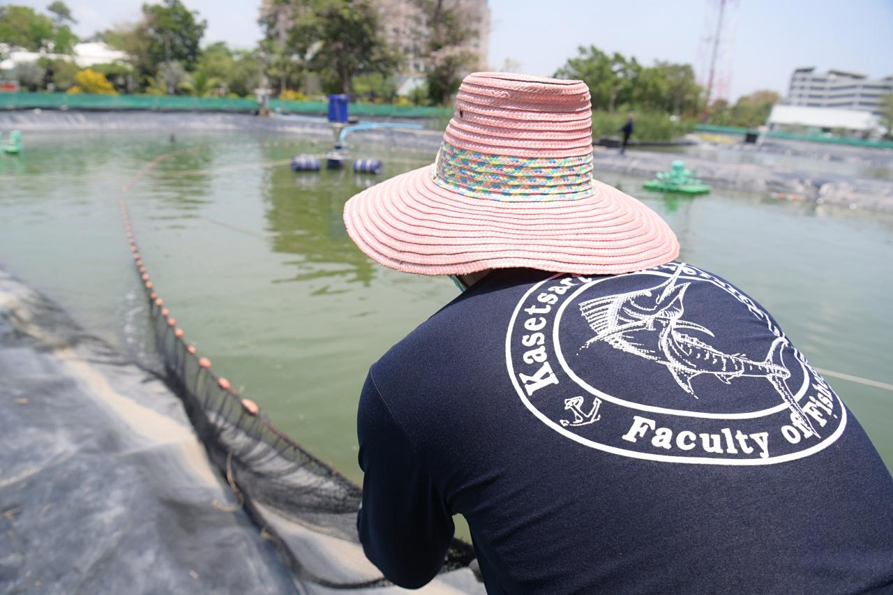 นิสิตคณะประมง ม.เกษตรฯ เรียนรู้การเลี้ยงสัตว์น้ำจืดระบบน้ำหมุนเวียนซีพีเอฟมั่นใจปรับใช้ได้