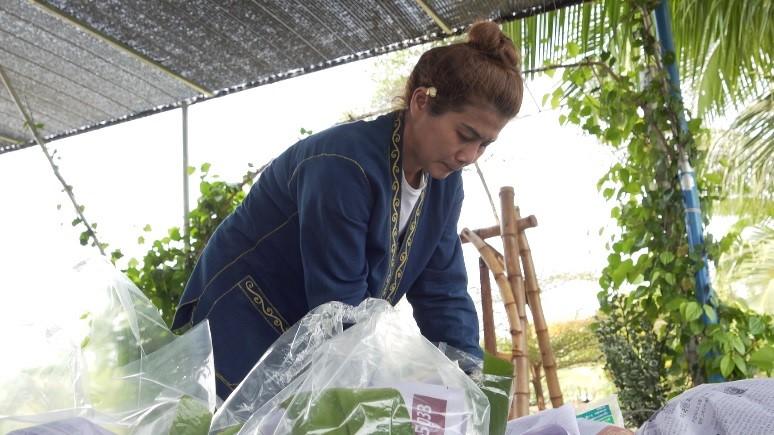 """YSF หญิงเก่ง พลิกผืนดินทำเกษตรผสมผสาน สู่การสร้างรายได้ที่ยั่งยืน """"มีกิน มีใช้ มีเก็บ"""""""