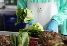 เจียไต๋ ยกระดับคุณภาพการผลิตสินค้าปลอดภัย รับเครื่องหมายรับรองมาตรฐานสินค้าเกษตร