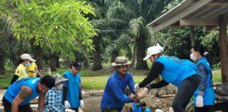 ซีพีเอฟจิตอาสาพร้อมสานประโยชน์สู่ชุมชน จับมือบ้านหัวนอน อ.ปะทิว จ.ชุมพร ซ่อมฝายชะลอน้ำรอฝน