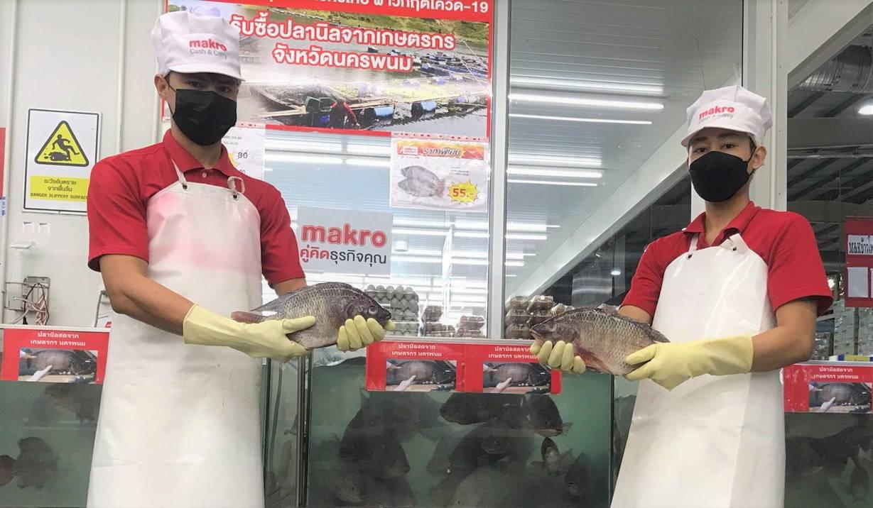 แม็คโคร รับซื้อปลานิล ช่วยชาวประมงนครพนมสู้วิกฤตโควิด