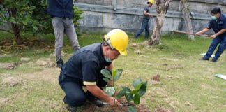 โรงงาน-ฟาร์ม CPF ทั่วประเทศ ร่วมปลูกต้นไม้ ลดปล่อยก๊าซเรือนกระจก สร้างสิ่งแวดล้อมที่ดีอย่างยั่งยืน