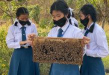 """มหิดลนครสวรรค์ และซินเจนทา ขยายเครือข่าย """"รักษ์ผึ้ง"""" ภาคกลางและตะวันออก สร้างความหลากหลายทางชีวภาพอย่างยั่งยืน"""