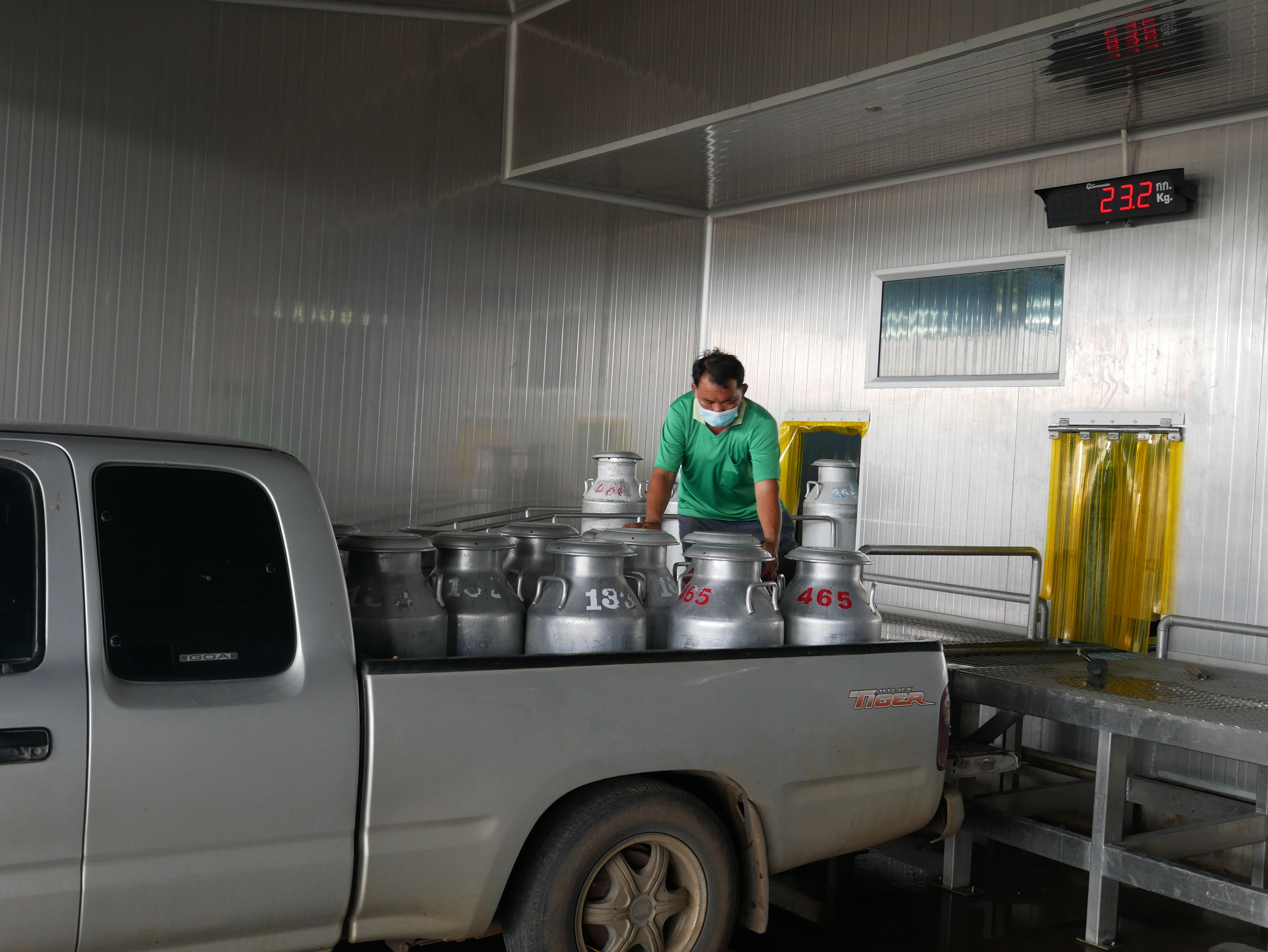 กองทุน FTA ช่วยเกษตรกรสร้างความมั่นคงด้านอาหารโคนมลพบุรี รองรับผลกระทบเปิดเสรีการค้าที่จะเกิดขึ้น