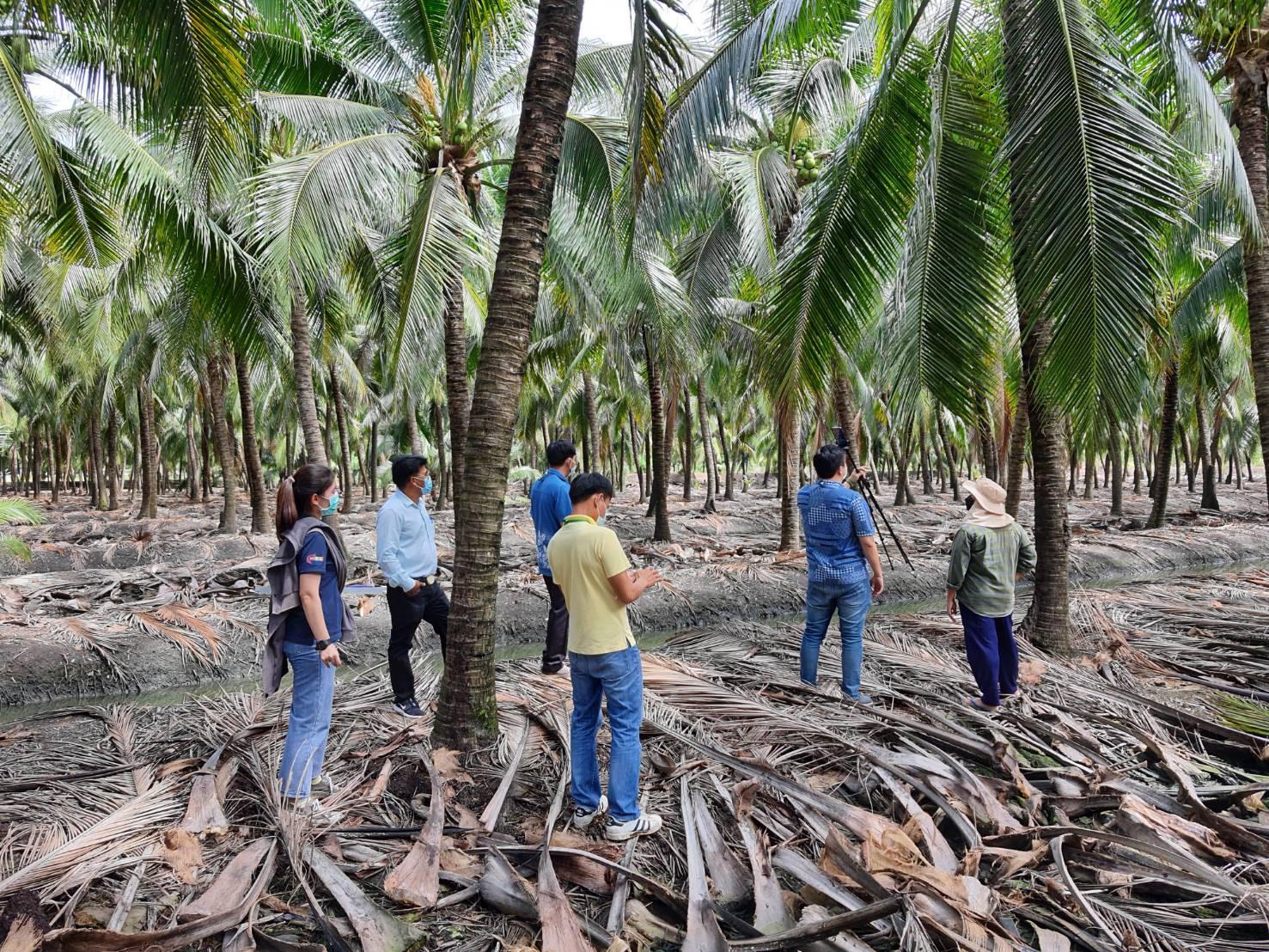 จีนไฟเขียวสวน ล้งผลไม้ไทยสอบผ่าน พร้อมเน้นย้ำให้เข้มงวดศัตรูพืชและเชื้อโควิด