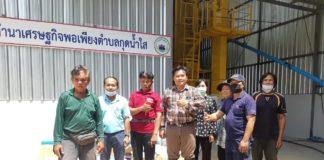 กองทุน FTA ไฟเขียว 25 ล้านบาท อนุมัติ 2 โครงการพัฒนาข้าวไทย
