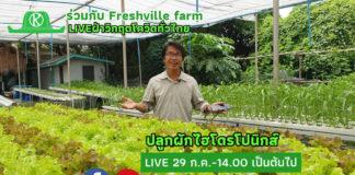เรียนออนไลน์ฟรี!! ปลูกผักไฮโดรโปนิกส์ฝ่าวิกฤตโควิด เกษตรก้าวไกลจับมือ Freshville farm