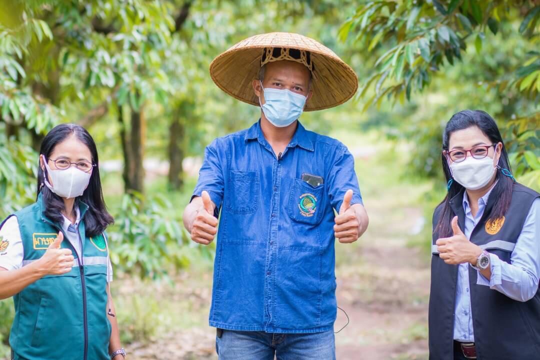 เกษตรฯ แจงผลการดำเนินงานโครงการยกระดับแปลงใหญ่ด้วยเกษตรสมัยใหม่และเชื่อมโยงตลาด ด้านพืช ยกเว้นข้าว ทำได้แล้ว 100%