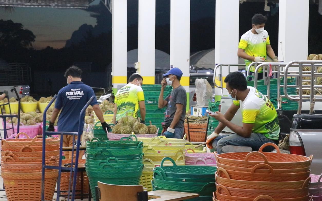 """""""เกษตรคือประเทศไทย"""" เกษตรกรอยู่รอดประเทศไทยอยู่ได้"""