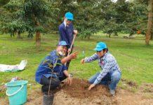ปลูกทุเรียนก้านยาวต้นคู่ ง่ายๆสไตล์ ดร.ณัฐ ป่าเด็ง-ป่าละอู มั่นใจรอด 100% (ชมคลิป)