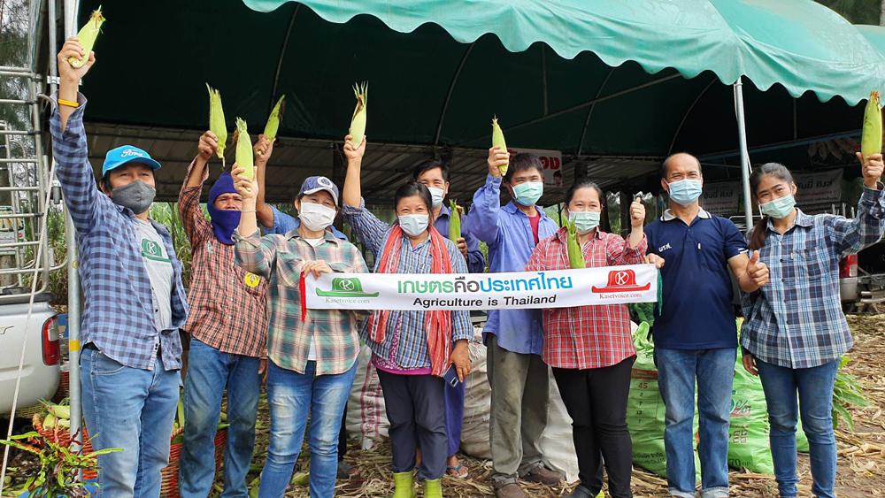 """เกษตรกรชลบุรีเปิดตลาดซื้อขายข้าวโพดกลางไร่ """"หนองอิรุณโมเดล"""" สร้างเศรษฐกิจชุมชนสุดเจ๋ง!!!"""