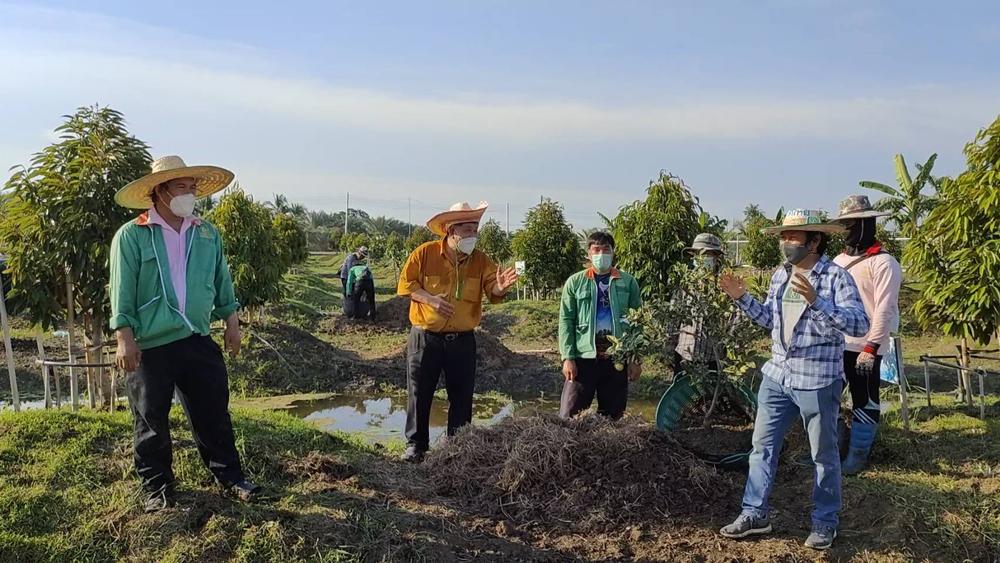 คุณสุเทพ กังเกียรติกุล (เสื้อสีทอง) กำลังให้ข้อมูลเรื่องการปลูกส้มแซมทุเรียน