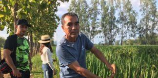 """สภาเกษตรกรเสนอ """"ท้ายน้ำทำนาก่อน ไม่มีน้ำทำนารับชดเชยด้วย"""""""