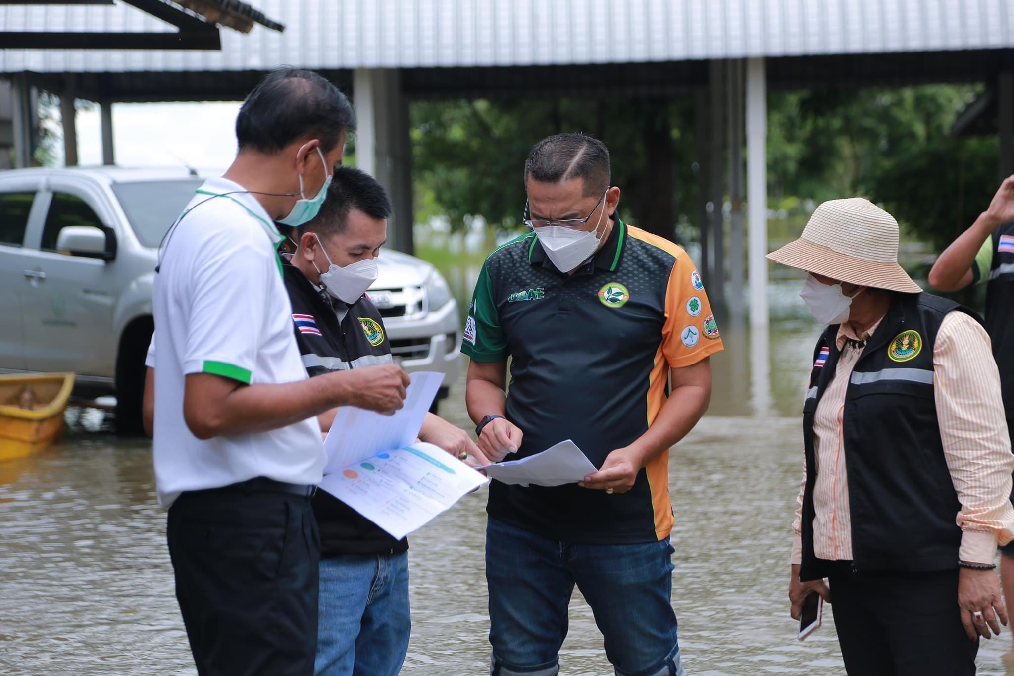 กรมส่งเสริมการเกษตรเผยแนวทางการช่วยเหลือเกษตรกรผู้ประสบภัยน้ำท่วม ย้ำเจ้าหน้าที่ต้องดำเนินการช่วยเหลือเกษตรกรผู้ประสบอุทกภัยให้เป็นระบบ ชัดเจน และรวดเร็ว