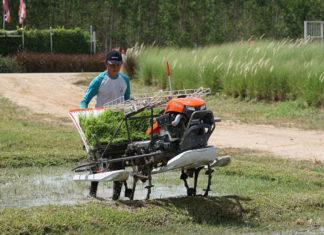 """สยามคูโบต้า เปิดตัวสินค้าใหม่ """"รถดำนาเดินตาม 4 แถว KW4"""" ตอบโจทย์เกษตรวิถีใหม่ ควบคุมงานง่าย สบายชีวิต"""