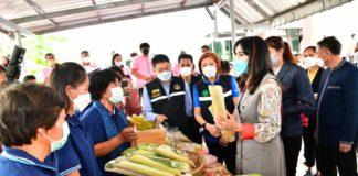 มนัญญา ลงพื้นที่สหกรณ์การเกษตรยางตลาด มอบโล่ประกาศเกียรติคุณให้กับสหกรณ์ต้นแบบ และร่วมแปรรูปผลผลิตทางการเกษตรตามโครงการแปรรูปสินค้าเกษตร